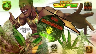 Ragga Jungle - Drum and Bass- Dubwise mix, Rastafari Roots  (mixed by King Wuppi)