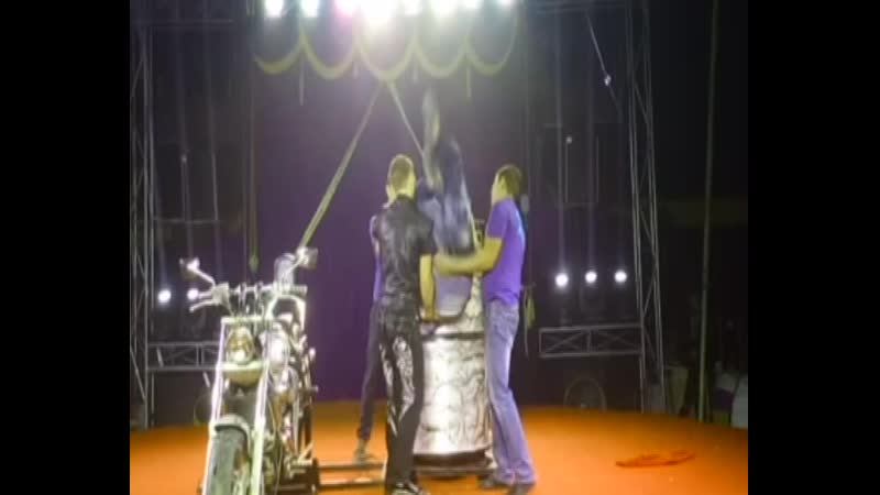 Миасс посетил цирк-шапито династии Довгалюк