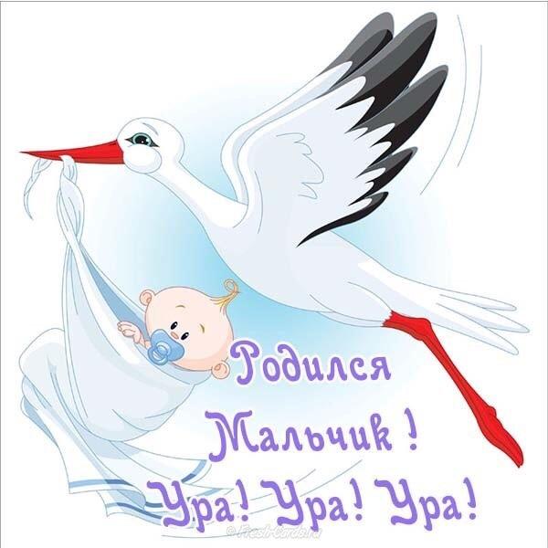 Поздравления с рождением племянника для тети в стихах