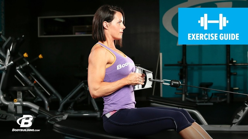 Seated Cable Row | Exercise Guide