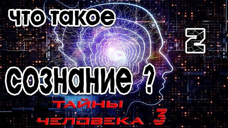 Что такое сознание (2)