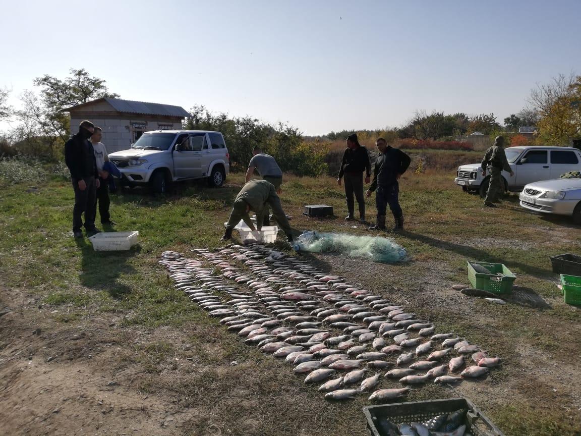 Под Таганрогом браконьеру вынесли приговор и назначили штраф в размере 500 тыс.рублей