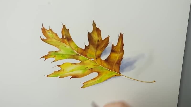 Realistic Leaf Painting in Watercolor
