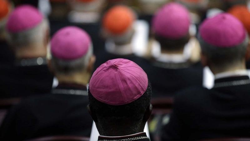 S nodo: o que os Bispos precisariam saber