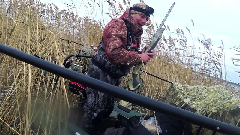 Суматошная охота на северную утку.