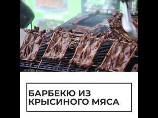 Барбекю из крысиного мяса