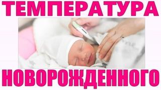 ТЕМПЕРАТУРА У ГРУДНОГО РЕБЕНКА ВАЖНЫЕ МОМЕНТЫ   Особенности терморегуляции новорожденного ребенка
