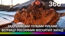 Российский фермер задушил волчицу голыми руками и стал звездой западных СМИ