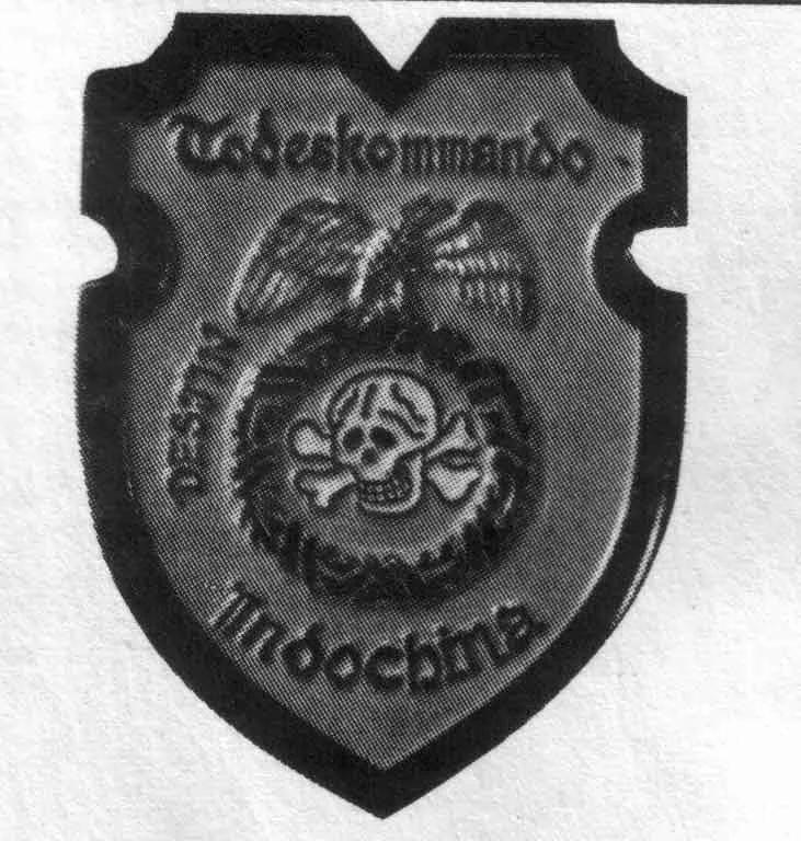 СС в Индокитае, или как нацисты воевали во Вьетнаме., изображение №8