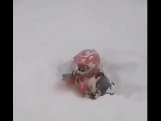 Покатушки на сноубайке  Казалось что могло пойти не так?  * Сноубайк - переделанный под снегоход горный мотоцикл класса эндуро