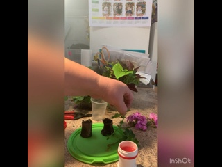 Видео от Цветочные дела Ижевск