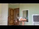 Видео от Alena Yoga