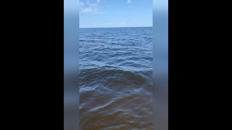 Видео от Анюты Леденёвой