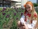 Фотоальбом Софьи Фисенко