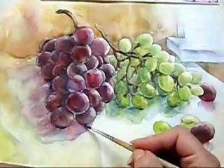 Mila Naumova. Виноград акварелью