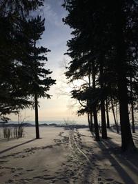 фото из альбома Татьяны Линкевич №16
