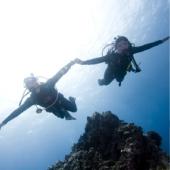 Курс PADI Drift diver