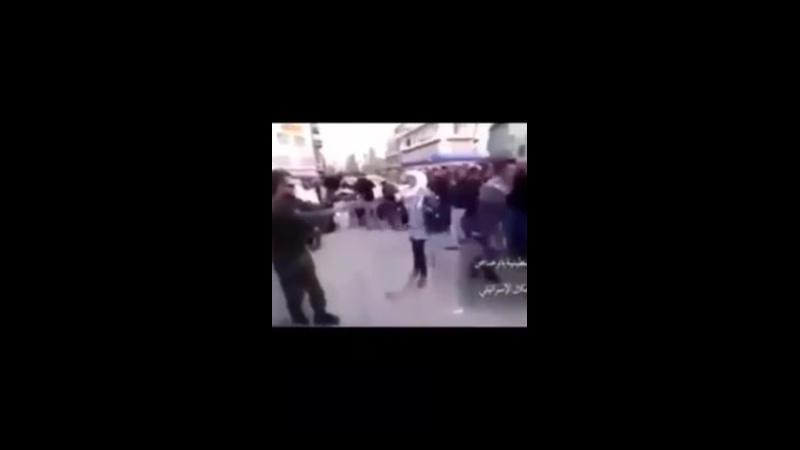 Quelques florilèges des crimes des juifs en Palestine
