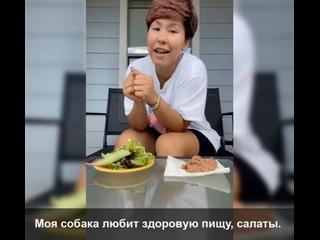 🥗❓🥩 Зеленый салат или сочная говядина? Угадайте, ч...
