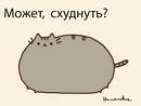 Фотоальбом Ксении Овсюк