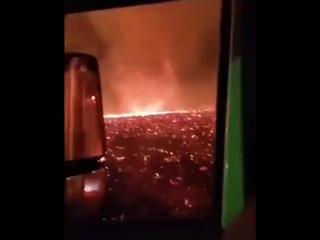 Калифорния вам мало лесных пожаров? Получите огненное торнадо.