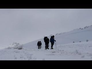 Видео от Елизаветы Сергеевой