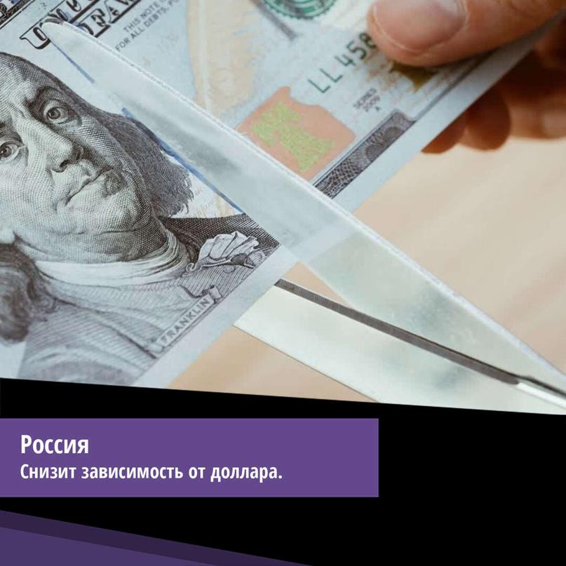 В МИДе предложили устранить зависимость России от «ядовитого» доллара