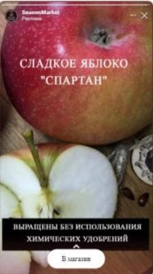 Открутили 15,2 млн рублей за 10 месяцев в нише «продукты питания», изображение №11