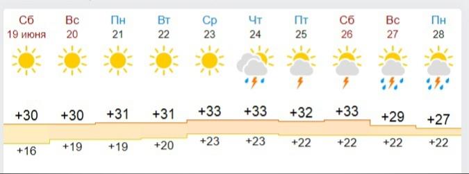 Стало известно, когда в Ярославле начнутся дожди и грозы