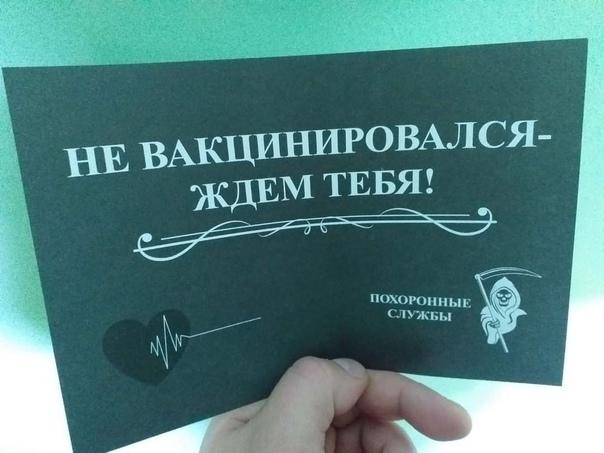 Такие листовки разносят по почтовым ящикам Тольятт...