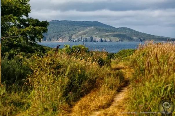 Загадочный остров Рейнеке на Дальнем Востоке: какие тайны он хранит Рейнеке самый загадочный остров Владивостока. Он входит в состав большого архипелага, расположенного южнее полуострова