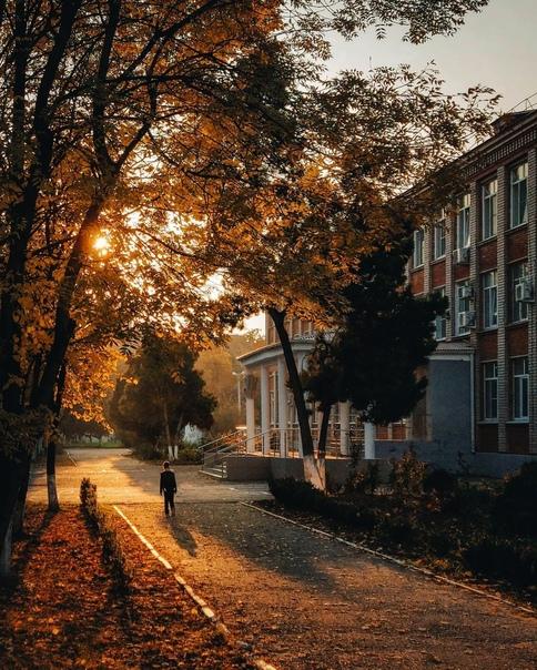 Минутный сюжет, как осенняя листва, рассыпался вокруг на десятки воспоминаний. В носу внезапно проснулся запах... [читать продолжение]