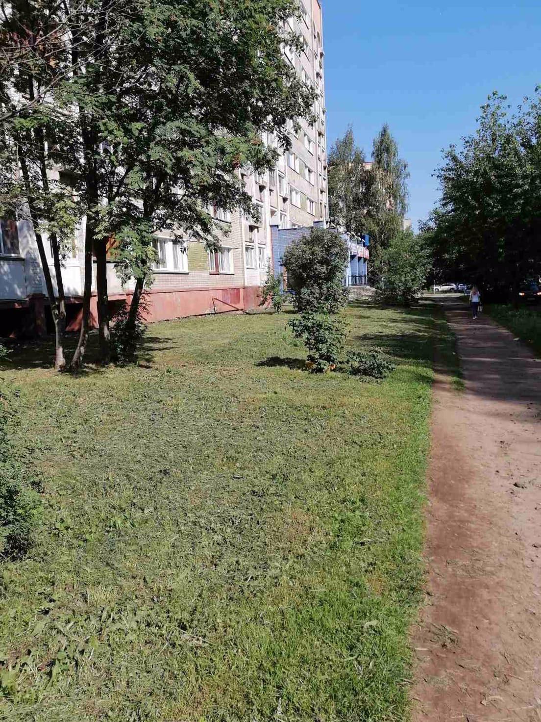 Улица Карла либкнехта дом 37 кошение травы