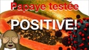 Président Magufuli de Tanzanie Papaye testée POSITIVE! 😅
