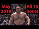 Tochinoshin all 15 bouts on Natsu basho (May 2019)
