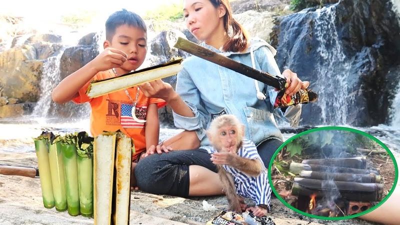 Baby monkey abu loves picnic with family | Abu loves bamboo sticky rice