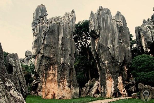 Китай. Шилинь (Shilin) Очередное чудо природного происхождения нам дарит Китай. Каменный лес в провинции Юньнань сказочное место. Кажется, будто десятки титанов когда-то нашли здесь свой приют и