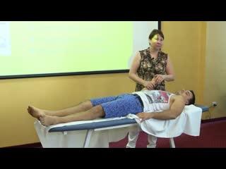 Лечим Внутренние органы. Висцеральная терапия от Васильевой (1)
