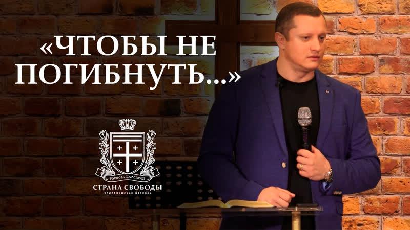 Чтобы не погибнуть 29 Февраля 2020 Алексей Новиков