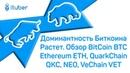 Доминантность Биткоина Растет Обзор BitCoin BTC Ethereum ETH QuarkChain QKC NEO VeChain VET