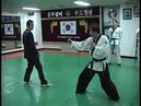 Hapkido Fighting Techniques