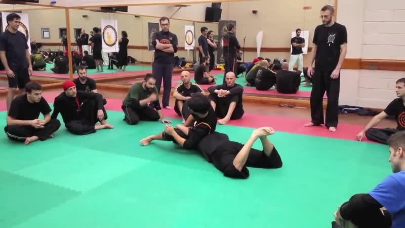 SILAT OPEN CIRCLE Introduction to SBL Italy November 2013