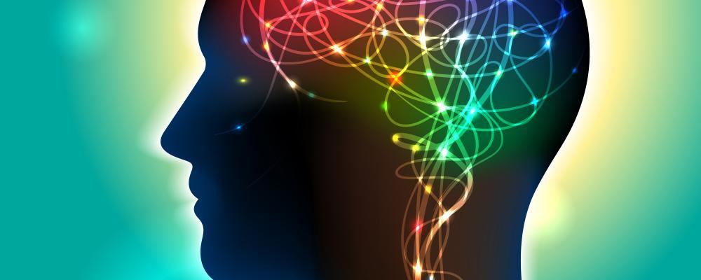 Когнитивная неврология - это вид науки, который изучает, как мозг влияет на умственную функцию.