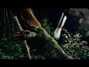 BBC Жизнь млекопитающих 01 Совершенная модель Познавательный природа 2002